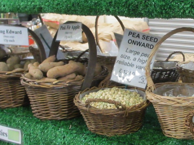 Seed potatoes and beans and pea seeds sold loose at Pound Farm Shop, Whaddon